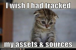 Sad kitten, with the caption, I wish I had tracked my assets and sources
