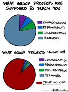 Meme showing Pie Charts on Group Work
