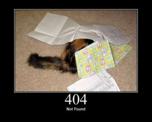 Cat, hiding under some papers, with the caption, 404 Not Found