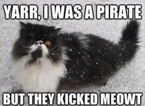 Pirate cat with the caption, Yarr, I was a pirate once, but they kicked Meowt