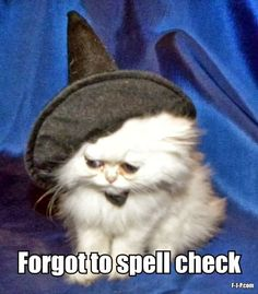 Sad white cat with witch's hat, with the caption, Forgot to spell check